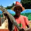 Za pieniądze... wszystko! Nawet małe wypchane krokodyle (ten jest żywy) z rzekomym zaświadczeniem (nic nie wartym), że legalnie kupione i można wieźć do Europy. Niestety nie jest dobrze. A turyści (mimo zakazów) kupują i przemycają.