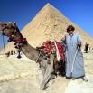 A może podróż na wielbłądzie? Tanio. Za 10 USD?